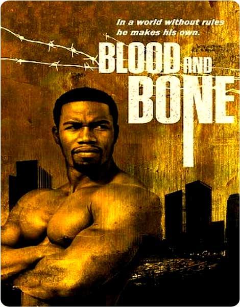 http://rozup.ir/up/vsdl/0/0000000000000/Blood.and.bone.2009_VSDL.jpg