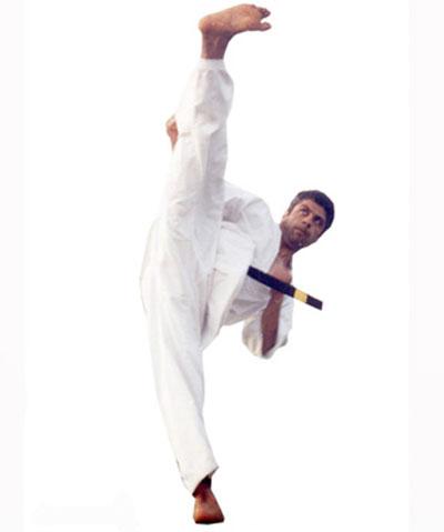 http://rozup.ir/up/vsdl/0/vsdl/Kyokushinkaikan/Kyokushinkai-65_vsdl.jpg