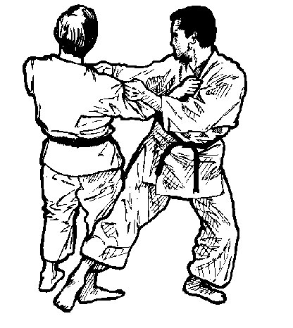 http://rozup.ir/up/vsdl/0/vsdl/karate/Karate2_vsdl.jpg