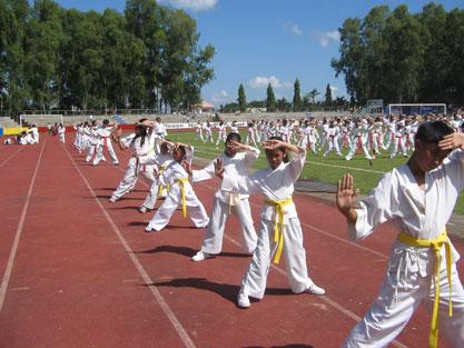 http://rozup.ir/up/vsdl/0/vsdl/karate/Karate5_vsdl.jpg