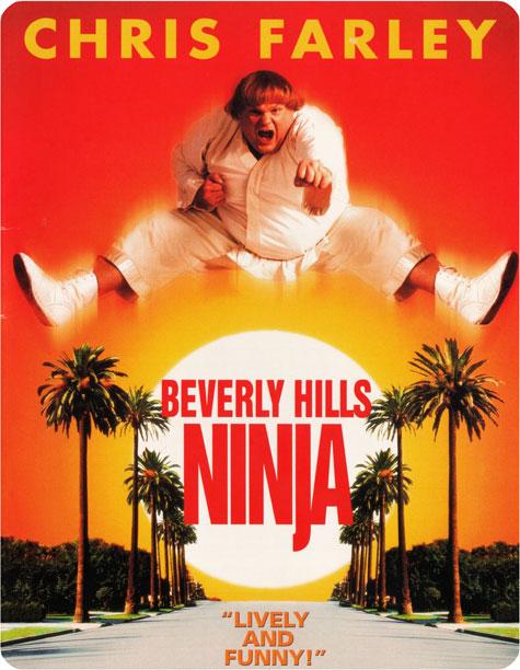 http://rozup.ir/up/vsdl/0000000000/0000000000000000000/Beverly.Hills.Ninja.1997-POSTER_VSDL.jpg