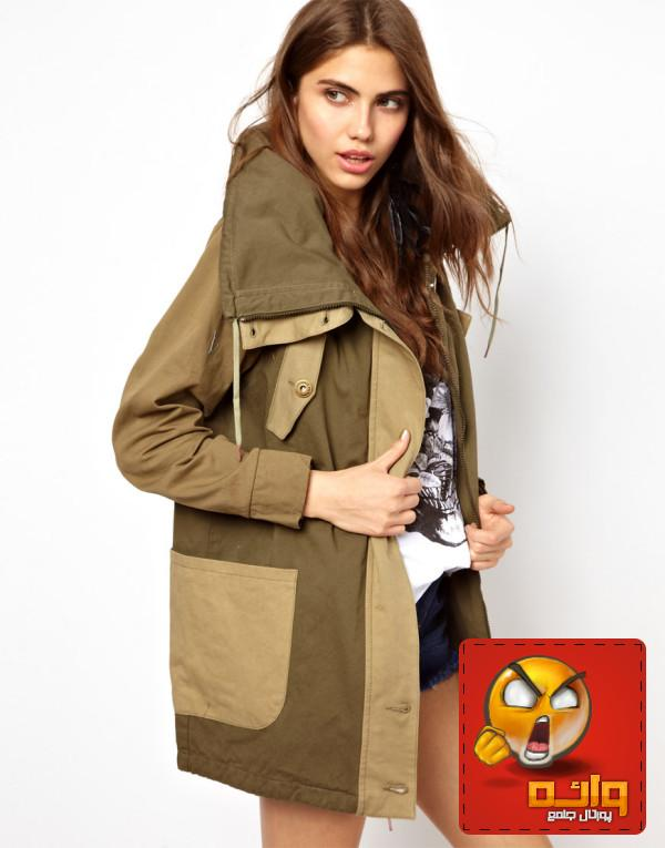 http://rozup.ir/up/wae/Pictures/Coat/Womens-Coat-Colors-2013-2014-10-600x765.jpg