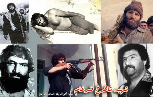 شهید شاهرخ ضرغام