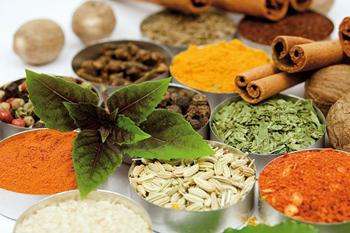 آشنایی با گیاهان دارویی ضد درد