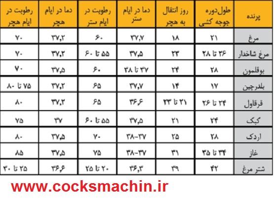 جدول زمانبندی جوجه کشی تخم ها