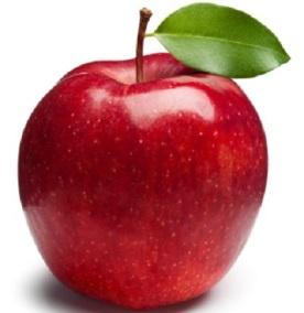 بیمه سیب