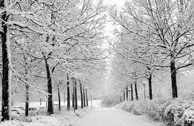 نکات طلایی جهت مسافرت در زمستان