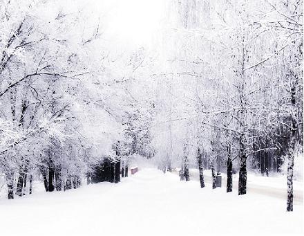 نمایش پست :اس ام اس زمستان