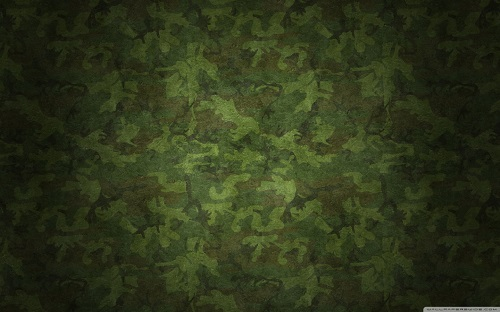 http://rozup.ir/view/1091147/military_camouflage_patterns-wallpaper-1440x900.jpg