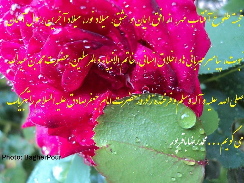 سلام بزرگوار...(محمدرضا باقرپور)