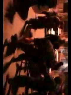 فیلم دستگیری برادران دالتون توسط یگان ویژه تهران