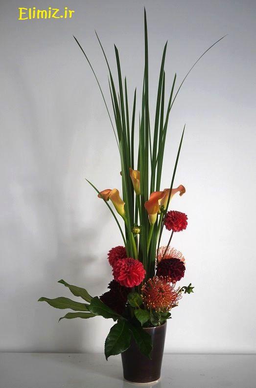 گل خوشگل برای خونه
