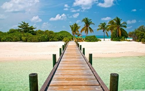 http://rozup.ir/view/1133105/tropical_dock-wallpaper-1440x900.jpg