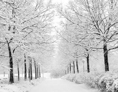 انشاء با موضوع فصل زمستان