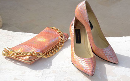 مدل ست کیف و کفش مجلسی زنانه