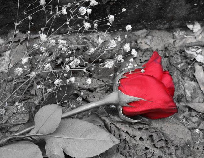 جرات ابراز عشق