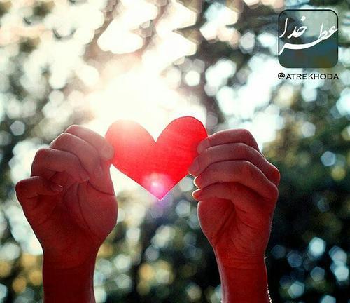 عکس عاشقانه 7