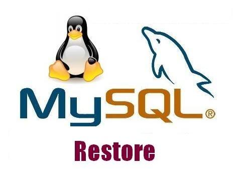 آموزش ریستور کردن فایل های حجیم MySQL در ssh