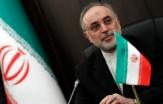 صالحی: دو رآکتور جدید در بوشهر احداث میکنیم/ انتظار داریم آژانس موضع بیطرفانه خود را حفظ کند