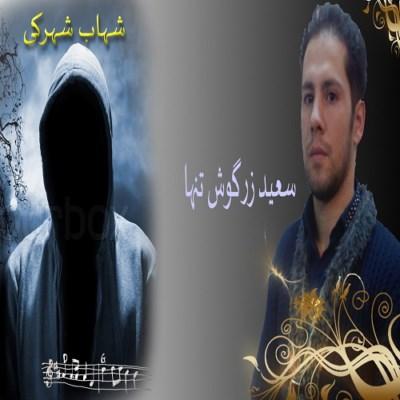 آهنگ جدید سعید زرگوش تنها و شهاب شهرکی به نام شب بارانی