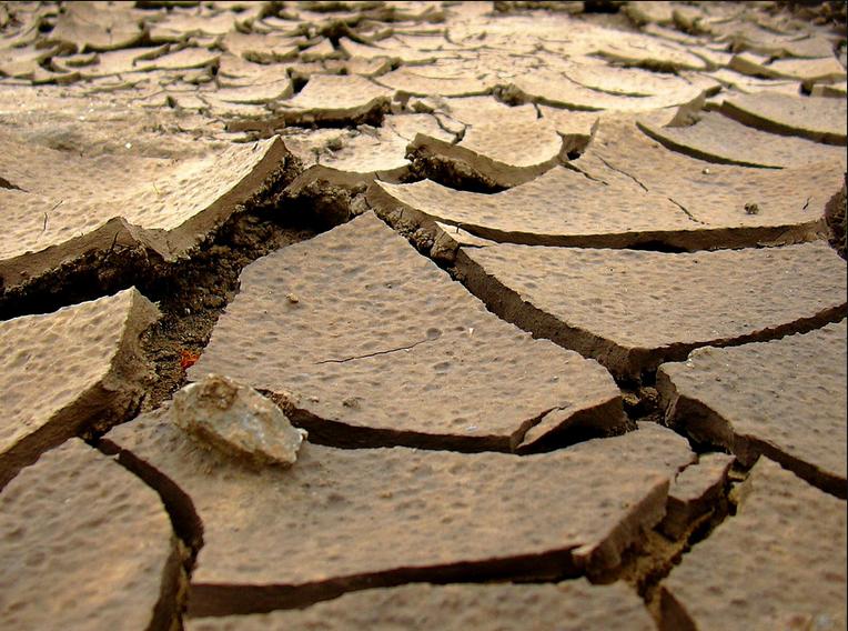 اصلاح خاک سدیمی