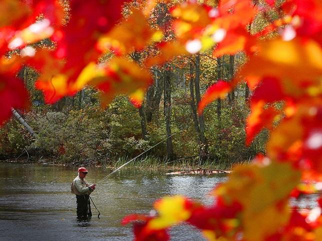 عکس های فوق العاده زیبا از فصل پاییز
