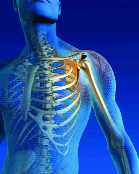راههای تقویت استخوانهای بدن