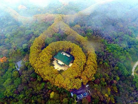 کاخی شبیه گردنبد زمرد در چین (+تصاویر)