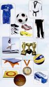 دانلودبانک اطلاعات فروشندگان لوازم ورزشی