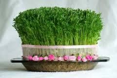 جشن سبزه ها