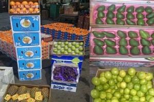 میوههای ممنوعه به جای امحا به فرهنگیان رسید
