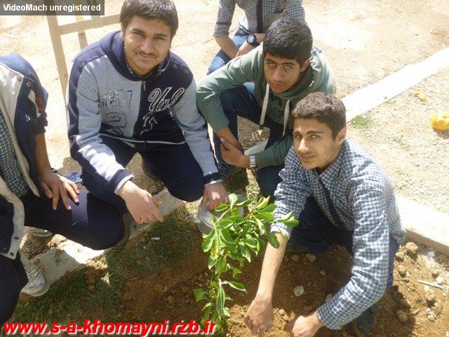 کاشت نهال به مناسبت هفته درخت و درختکاری
