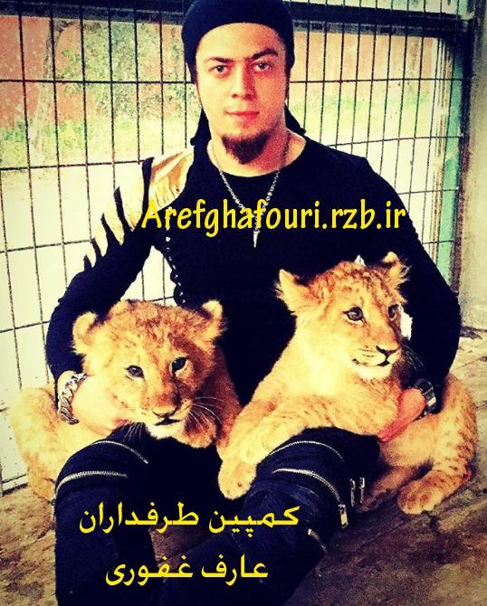 عکس جدید عارف غفوری با دو تا بچه شیر