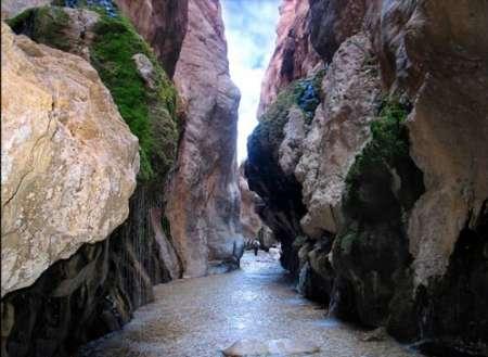 « چشمه مرتضی علی» جاذبه ای طبیعی و بکر در دل کویر