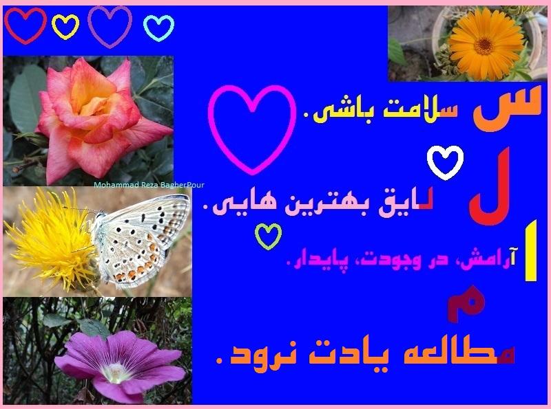 سلام...(محمدرضا باقرپور)