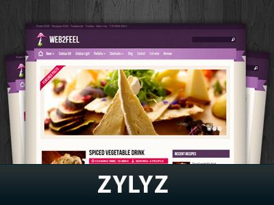 دانلود قالب Zylyz نسخه وردپرس