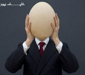 معمای جالب تخم مرغ فروش میلیونر