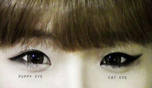 عکس فرق بین آرایش چشم گربه ای و آرایش چشم سگی
