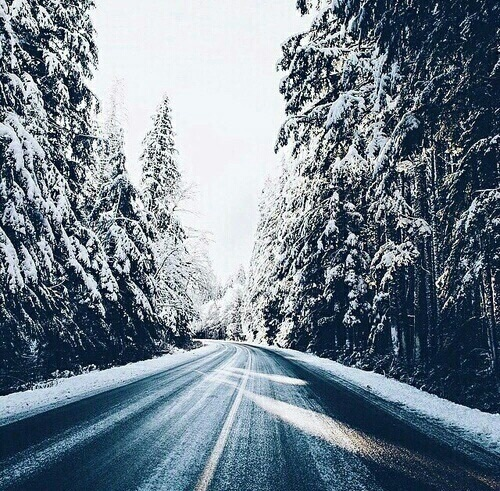 دانلود رمان خواب زمستانی