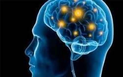 بهترین روش بهبود حافظه و تمرکز چیست؟