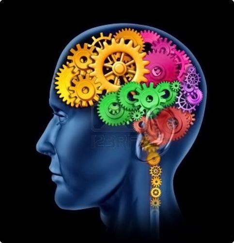 مغز هنگام خواب در جای ناشناس، نگهبانی میدهد