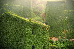 طبیعت یا روستا+تصاویر