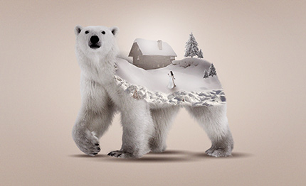 اموزش مونتاژ تصویر خرس با خانه در فتوشاپ