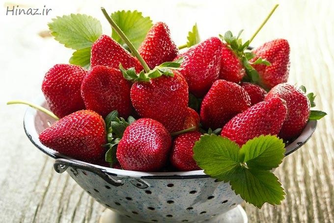 عکس, آموزش رایگان پرورش توت فرنگی های آبدار در آپارتمان