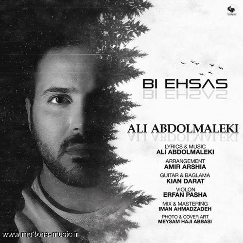 دانلود  آهنگ جدید علی عبدالمالکی بنام بی احساس+متن