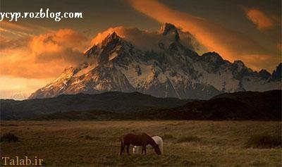 تصاویر بی نظیر از طبیعت