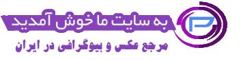 مدل مانتو ایرانی اسلامی , مدل مانتو بلند ایرانی , عکس از مدل مانتو