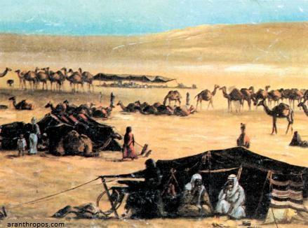 یقال عن قبیلة الظفیر البدویه