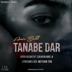 Amir Bold - Tanabe Dar