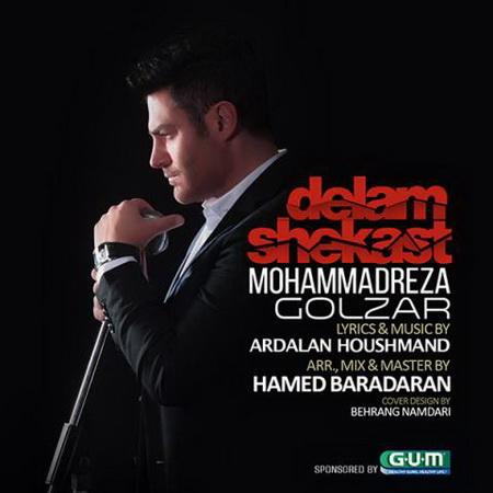 دانلود آهنگ دلم شکست از محمدرضا گلزار